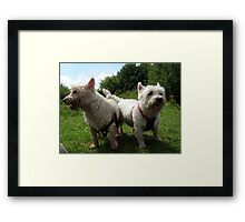 Agnes and Freddie Framed Print