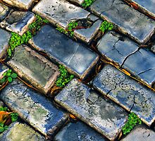Goodbye Yellow Brick Road - Hello Blue Cobblestone Road ©  by © Hany G. Jadaa © Prince John Photography