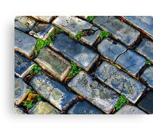 Goodbye Yellow Brick Road - Hello Blue Cobblestone Road ©  Canvas Print