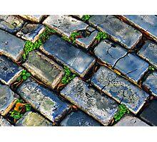 Goodbye Yellow Brick Road - Hello Blue Cobblestone Road ©  Photographic Print