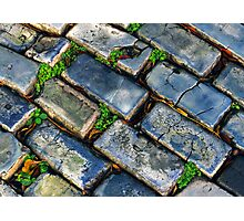 Goodbye Yellow Brick Road - Hello Blue Cobblestone Road ©  Photographic Print