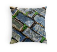 Goodbye Yellow Brick Road - Hello Blue Cobblestone Road ©  Throw Pillow