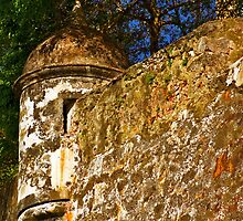 The Wall - Paseo del Morro - Old San Juan by © Hany G. Jadaa © Prince John Photography