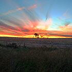 Sunset over Stockinbingal by Justin Knewstub