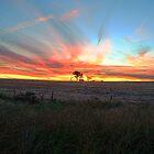 Sunset over Stockinbingal by Justin Knewstub