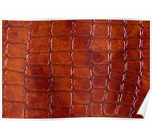 Rusty snake leather cloth imitation  Poster