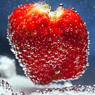 Strawberry Bubbles by Malcolm Katon