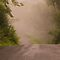 EARLY Morning Mist or Fog - COUNTRY ROADS ONLY!