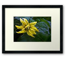 Promise of Good Things to Come Framed Print