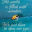 The world is filled with wonders by Rowan  Lewgalon