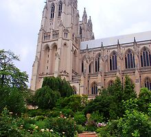 Washington National Cathedral by Karen  Rubeiz