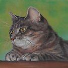 Pretty Kitty by Pam Humbargar
