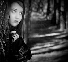 Who's afraid of the big bad wolf by Elisabeth Ansley