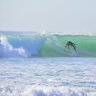 Surfs Up ... by Danceintherain