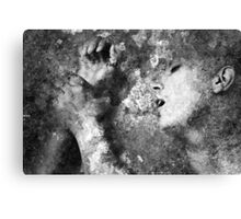Wall Of Passion Canvas Print