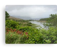 View up the river. Metal Print
