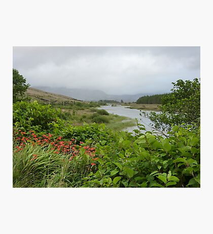 View up the river. Photographic Print