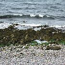 Scottish Shoreline by BlueMoonRose