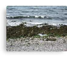 Scottish Shoreline Canvas Print