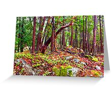 Gulf Island Woods in the Fall Greeting Card
