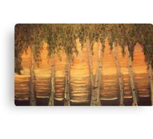 Birches in the Sun Canvas Print