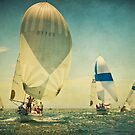 Long Beach Regatta by Suzanne Cummings