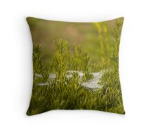 Morning Dew on The Web Throw Pillow