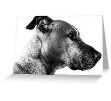 Nash profile Greeting Card