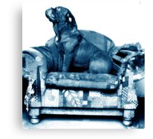 Blue Couch Canvas Print
