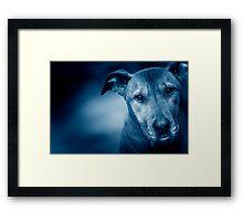 Nash Blue Framed Print