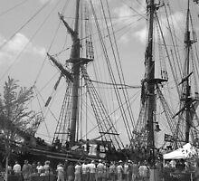 Tall Ships by TheresaR