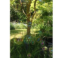 Bubbles in the garden  Photographic Print