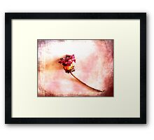 When Summer has passed. Framed Print