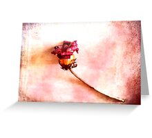 When Summer has passed. Greeting Card