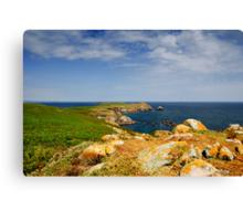 Great Saltee Island, County Wexford, Ireland Canvas Print