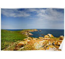 Great Saltee Island, County Wexford, Ireland Poster