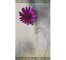 Retro Flower Photographic Print