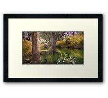 Campbell Creek,Dysart Queensland, Australia Framed Print