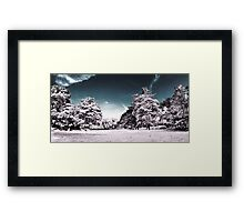 Infrarouge 2 - Panorama nature infrared mockup  Framed Print