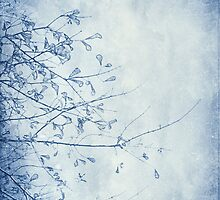 nature in blue by leapdaybride