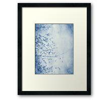 nature in blue Framed Print