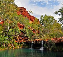 FERN POOL, DALES GORGE    W.A. by Raoul Madden