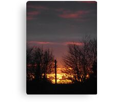 shadow of the trees  Canvas Print