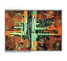 Composition #3 Photographic Print