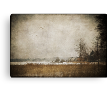 Winter in the suburbs Canvas Print