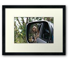 Gemini - in the 4WD Framed Print