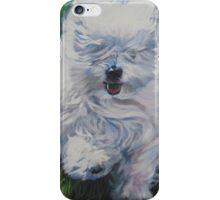 Coton De Tulear Fine Art Painting iPhone Case/Skin