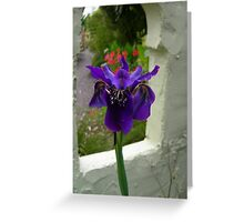 Flower 53 Greeting Card