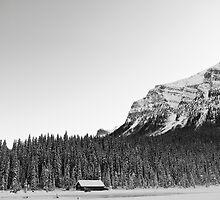 Snowy Trees Surround the Lake by Ryan Davison Crisp