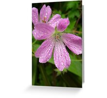 Flower 55 Greeting Card